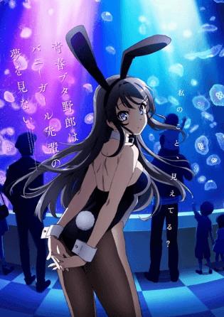 seishun-buta-yarou-wa-bunny-girl-senpai-no-yume-wo-minai